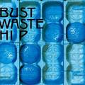 THE BLUE HEARTS / ザ・ブルーハーツ「Bust Waste Hip<アナログ>(初回生産限定)」