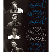 "CNBLUE「2014 ARENA TOUR""WAVE""@OSAKA-JO HALL(Blu-ray)」"