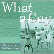 Warner Girl Group Nuggets(V.A.) / ワーナー・ガール・グループ・ナゲッツ(V.A.)「WHAT A GUY - Warner Girl Group Nuggets Vol. 3 / ホワット・ア・ガイ~ワーナー・ガール・グループ・ナゲッツ Vol.3」