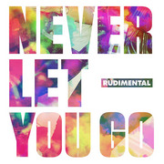 RUDIMENTAL / ルディメンタル「Never Let You Go」