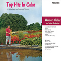 Top Hits In Color / トップ・ヒッツ・イン・カラー