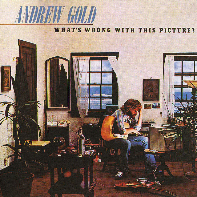 andrew gold アンドリュー ゴールド what s wrong with warner